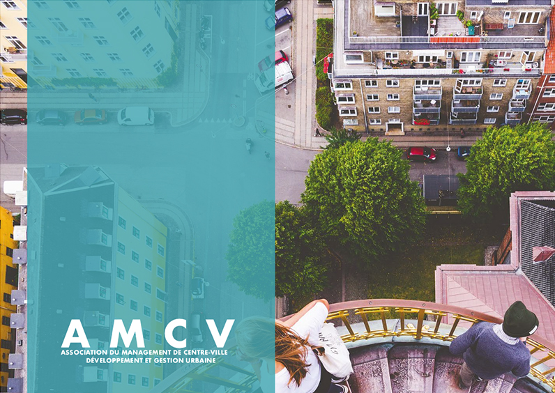 AMCV 2019